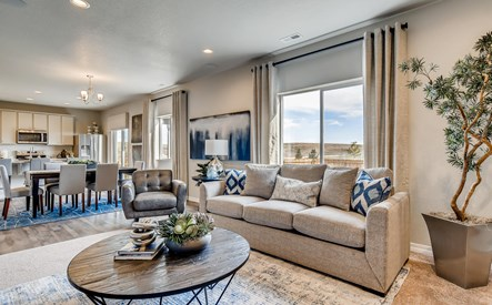 6047 mumford drive colorado-large-006-005-living room-1499x1000-72dpi