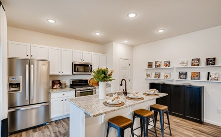 4654 river highlands loop-print-008-007-kitchen-3600x2400-300dpi
